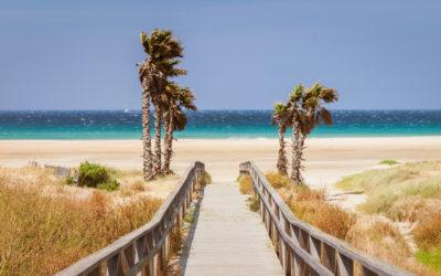 Una excursión muy especial: Las playas de Tarifa