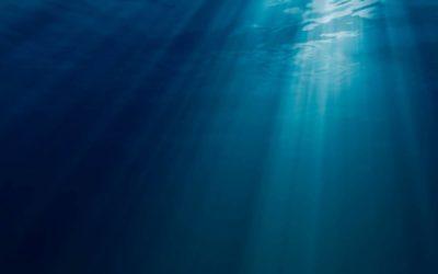 Comerse el Océano